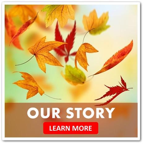 Story-B