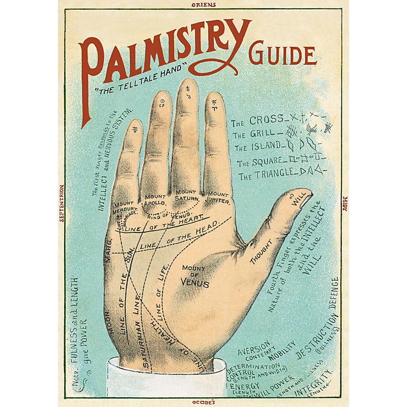 Cavallini & Co Palmistry Guide
