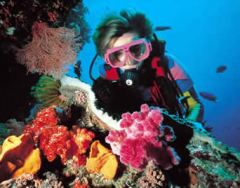 Barrier Reef Bucket List