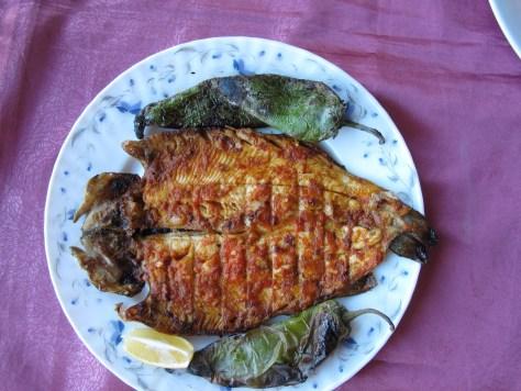 Sultansuyu Harası fish