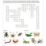 TTS: Serangga