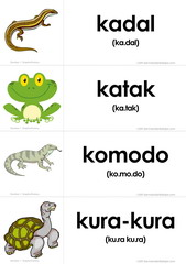 flashcards reptil_amfibi