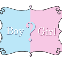 A boy can't be a girl