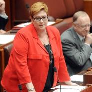 Marise Payne's Defence Force discriminates against men