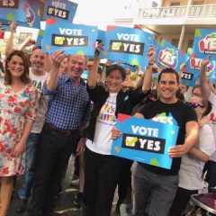 Conservative: Pyne is doing it 'Wong'