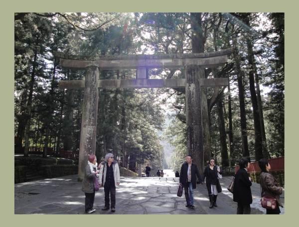 Torii aus Holz in Nikko bei Tokio