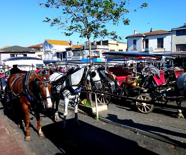 Pferdekutschen auf  Büyükada bei Istanbul