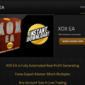 XOX EA