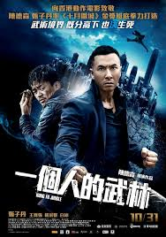 Kung Fu Jungle Hindi full Movie Download