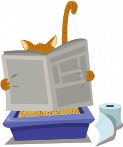 Best Cat Litter Box Options - automatic litter boxes