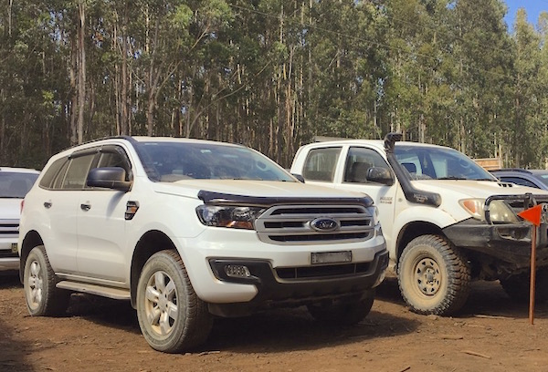 ford-everest-coffs-harbour