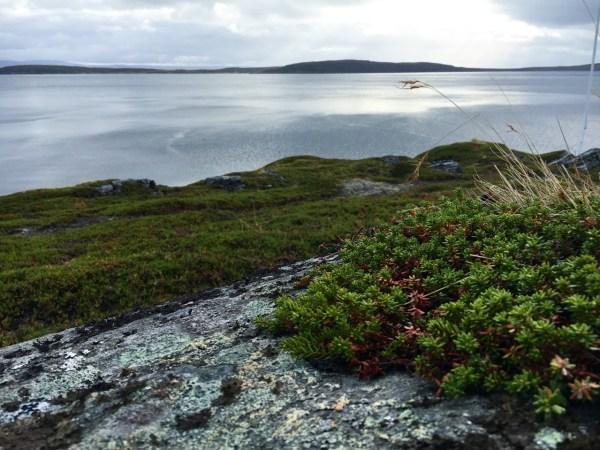 nordkapp-road