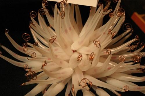 Elements of Green Margie McDonald anemone KC Nov 2009