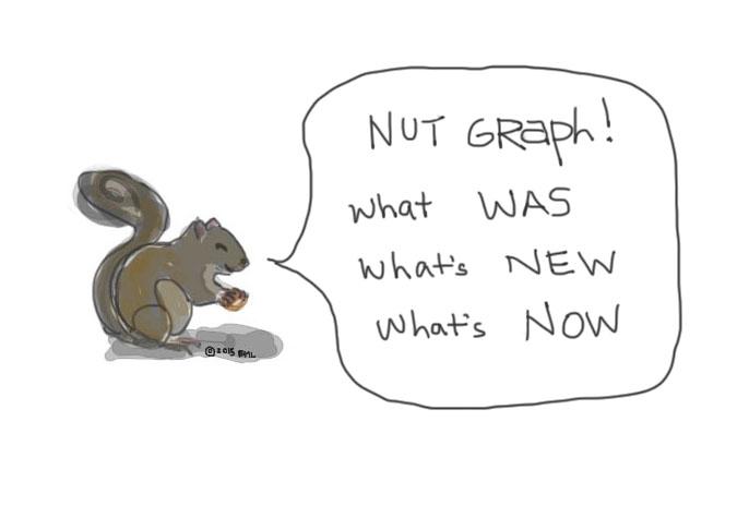 nut graf