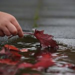 autumn-2917472_1280
