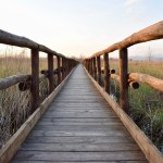 wooden-footbridge-2114668_1280