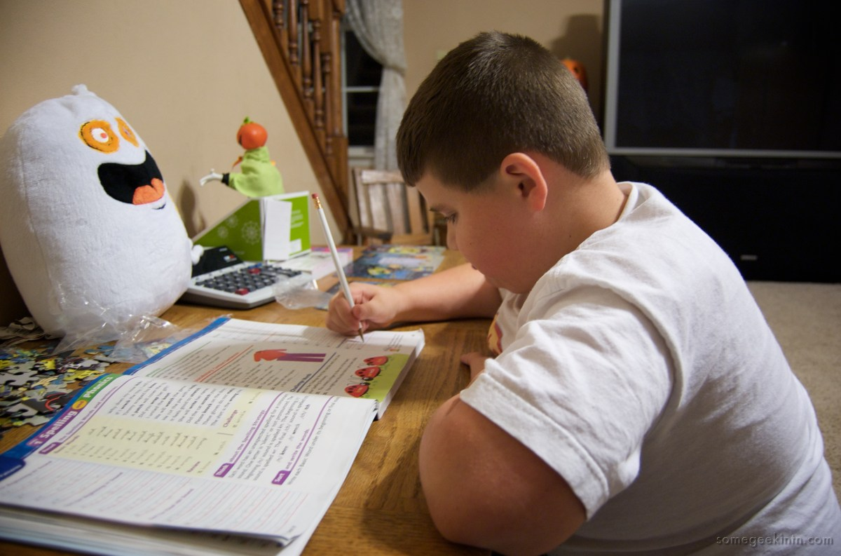 Pros and Cons of making homework optional