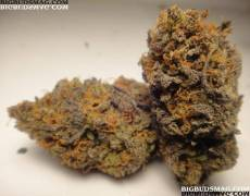 Cherry Pie strain source: bigbudsmag.com