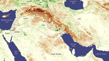 Susza w latach 2006-10 objęła pogranicze Turcji, Syrii i Iraku