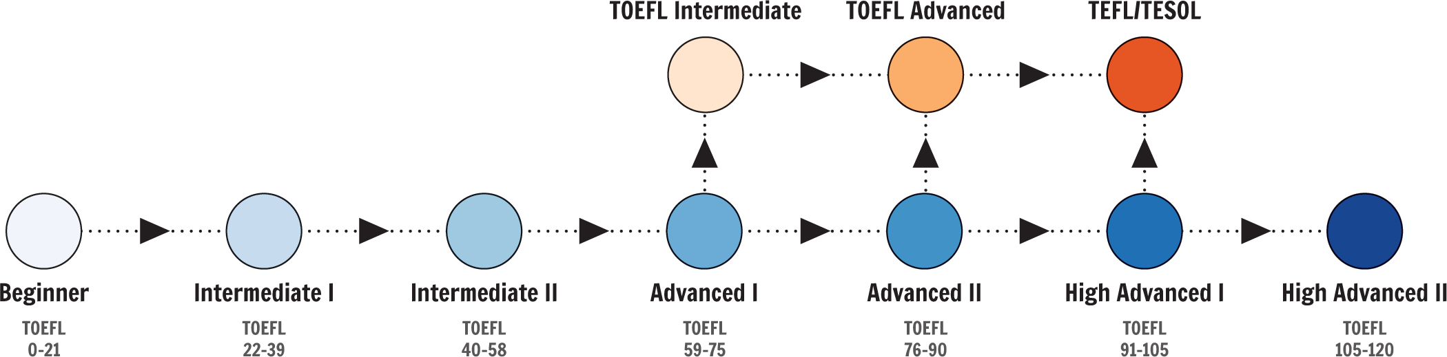Boston International Academy Level Progression - ESL, TOEFL, and TEFL/TESOL