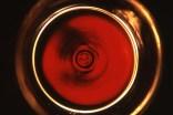 Wein Burgenland - Event - 1a