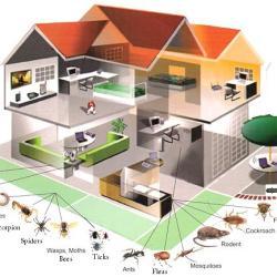 Alpha Ecological Pest Control Company
