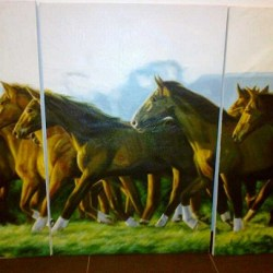 Original, Hand-painted Oil on Canvas Paintings