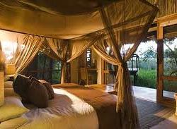tented camp 3