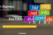 domain-names.fw