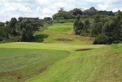 golf course 13