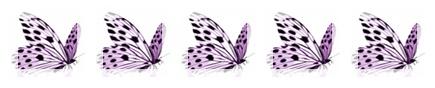 bibilotta 5 Schmetterlinge