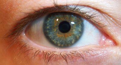 Eyeball20039a.jpg