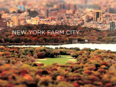 New York Farm City