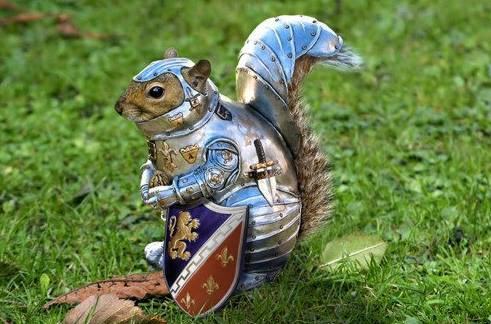 Ferguson Area Squirrels Develop Primitive Armor, Fear Being Ran Over By 'Asshat Police for Sport'