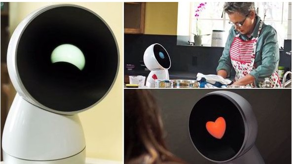 JIBO Robot To Go On Sale in 2016