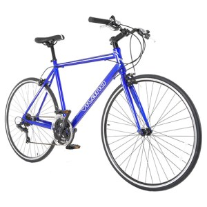 Performance Hybrid Bike