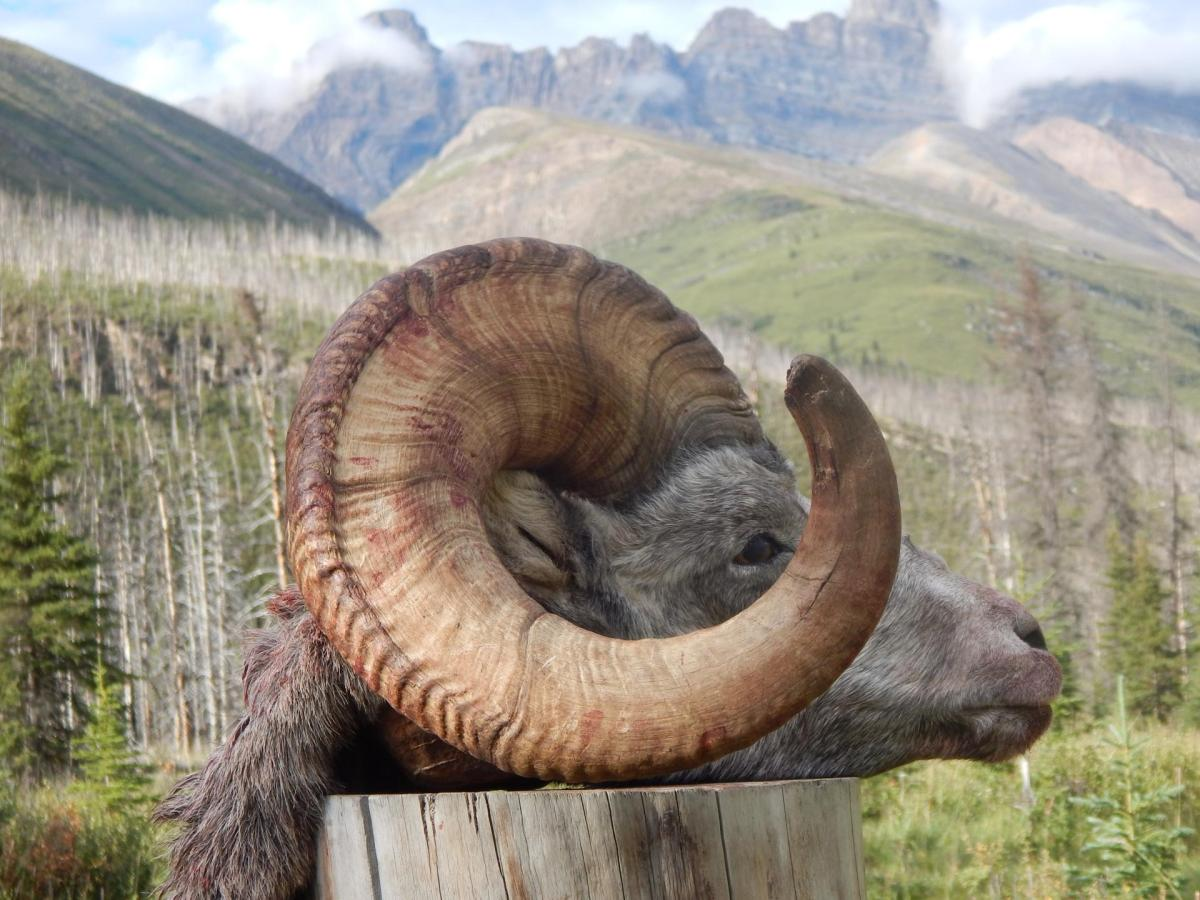 chevrolet traverse lease deals by trophy hunters 2015 ram html autos post