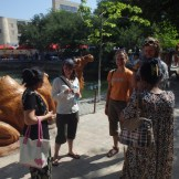 Lisa, Alice and Peter meet the locals