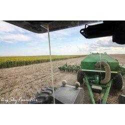 Small Crop Of What Does Seeding Mean