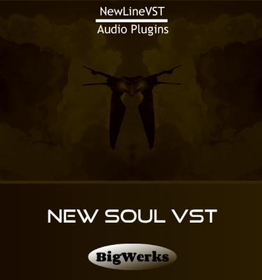 NEW-NEW-SOUL-bigwerks