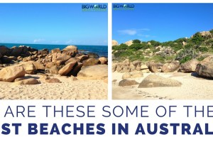 Are These Some of The Best Australia Beaches?