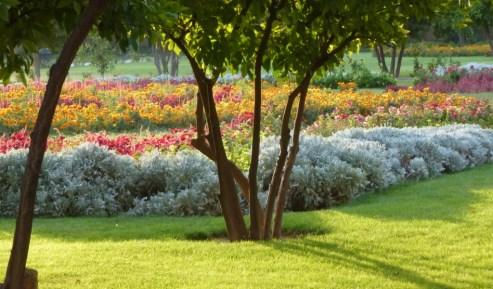 Shiraz - Jahan Nama garden