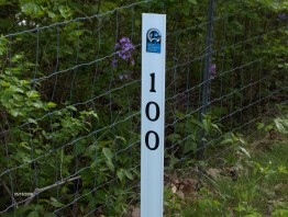 2006 DC-Pittsburgh - Mile_Marker_100