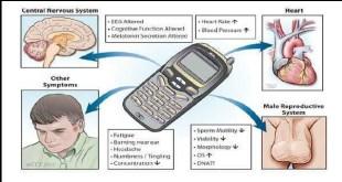 mobiila