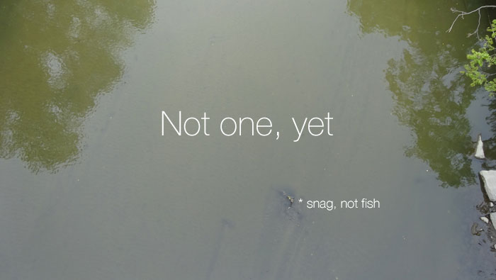 not-one