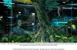 Avatar Displays