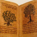 História da Botânica