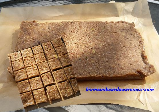 SCD Protein Bar (similar to Cliff Bars) or Bite Sized Candy