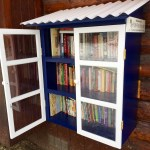 Enjoy Birchwood's Free Little Library