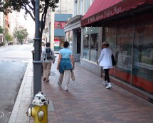 BirdSafe Pittsburgh volunteers walk the streets of Pittsburgh looking for birds that have collided with windows.